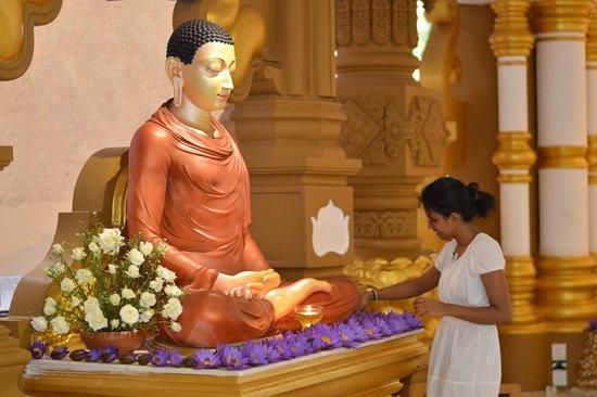 Contribute to Monastery